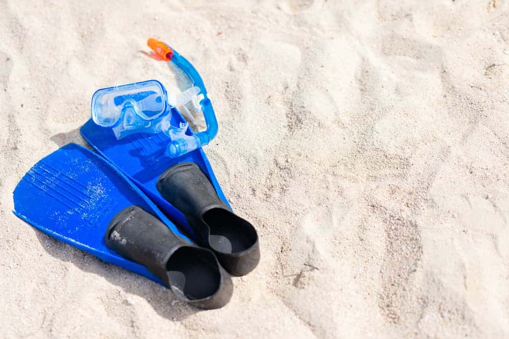 Venture Thrill_Things You Need in Your Snorkelling Kit