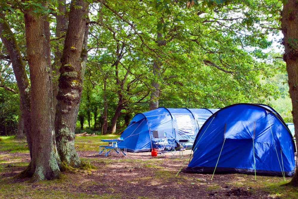 Venture Thrill_Large Cabin Camping Tents